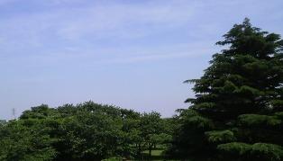 20100601_2